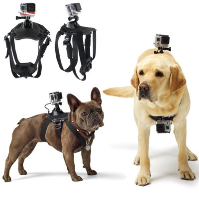 6a5ffac0260 Adjustable GoPro Harness for a Pilot s Best Friend